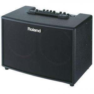 Loa Roland AC-90